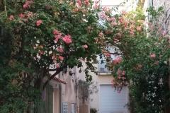 Saint-Tropez-816