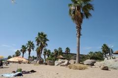 Frejus-Strand-Base-Nature