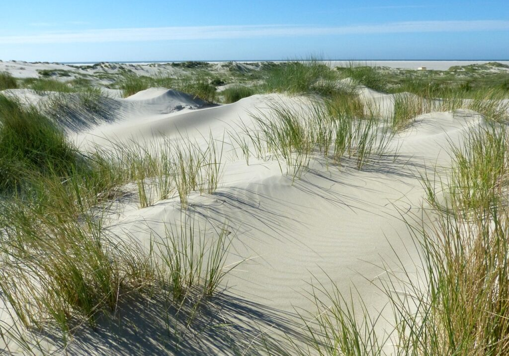 Meer-Kueste-Sand-Strand